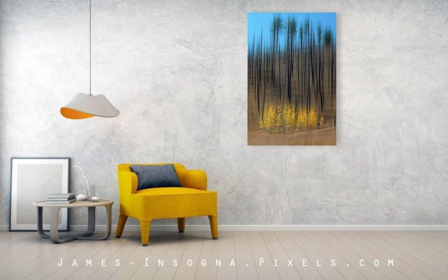 "Aspen Forest Burnout Abstract Art Canvas Print 32""x48"""