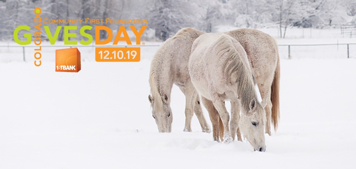 December 10th is quickly approaching! Schedule your Colorado Gives Day donation today!