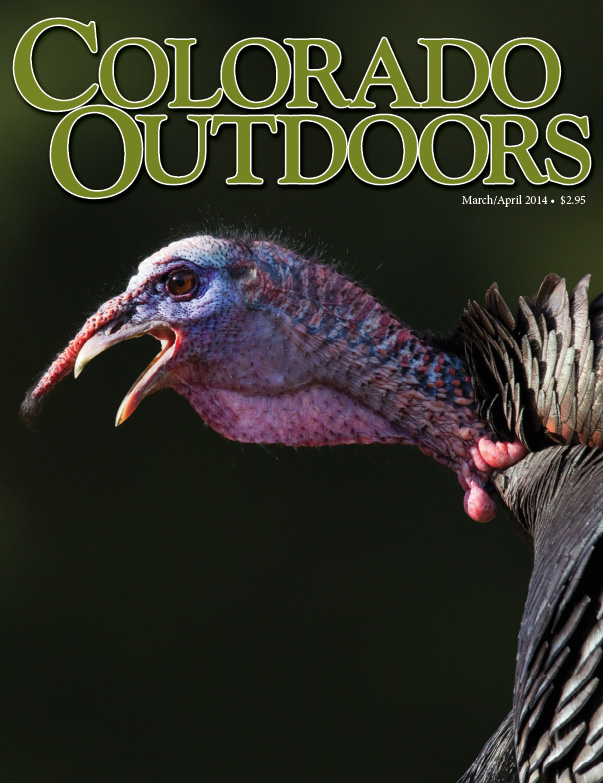 mar-apr-2014 cover