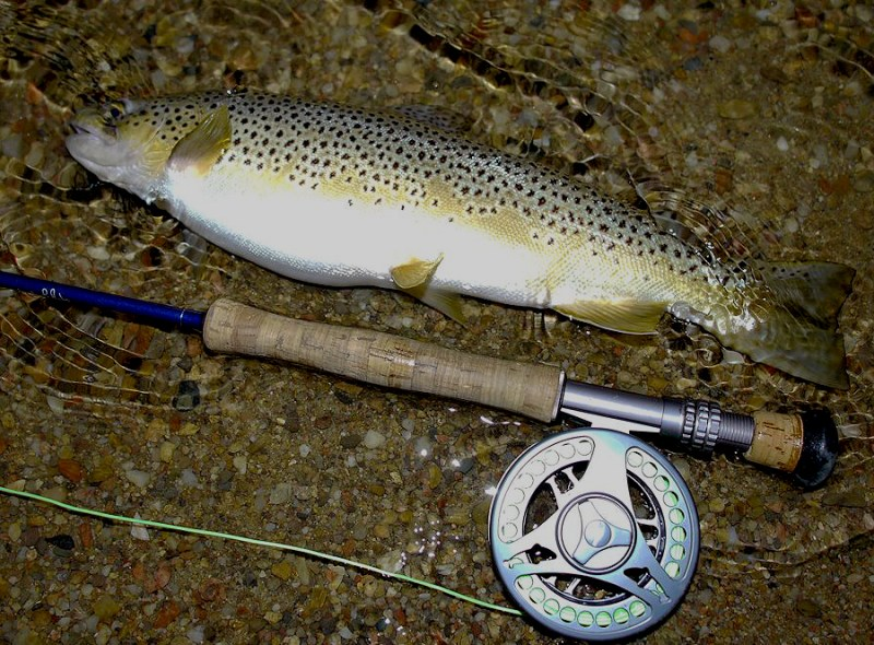 Fishing wooly buggers at night is effective for catching brown trout. Photo by Jerry Neal/CPW.