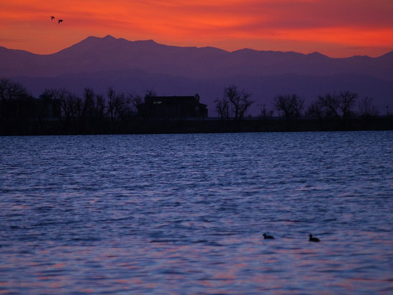 Barr Lake State Park is one of the top bird watching locations in Colorado. Photo by © Jerry Neal/CPW.