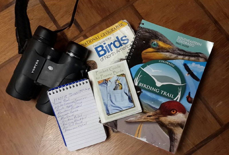 Getting started in bird watching requires very little equipment. Photo by © Brian Marsh.