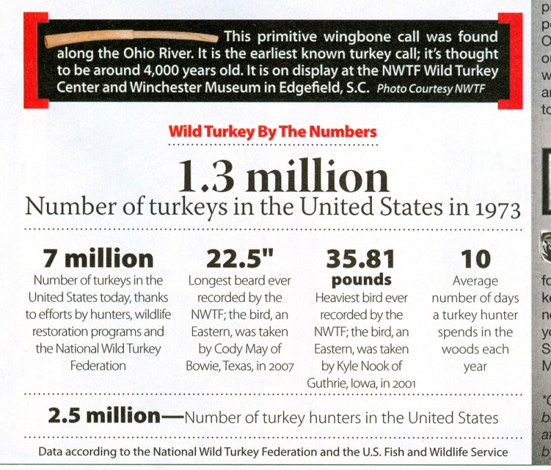Turkeys in The United States