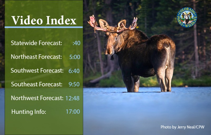 Big-game Hunting Forecast Video Index