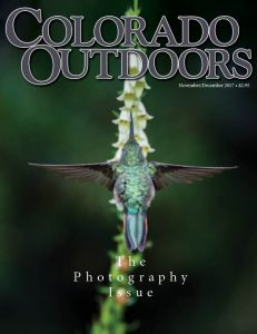 2017-Photo-Issue