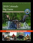 2018 Big Game Brochure