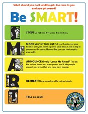 Be-SMART