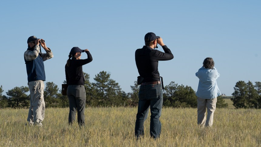 Birding team at viewing station 6