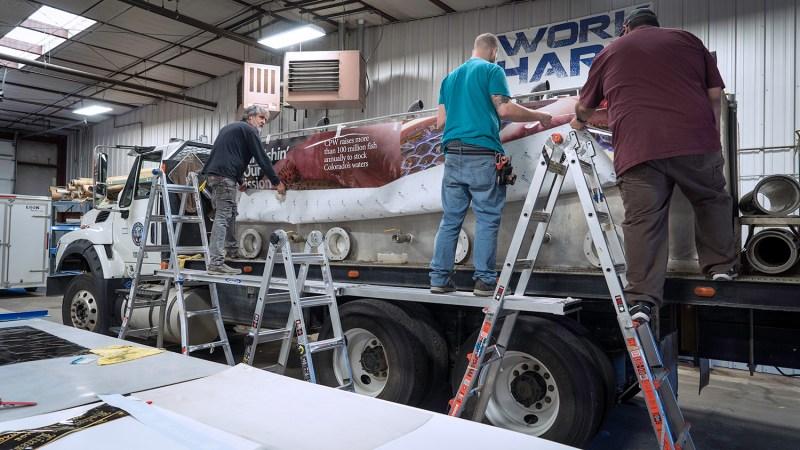 Applying vinyl wrap to CPW Hatchery Truck