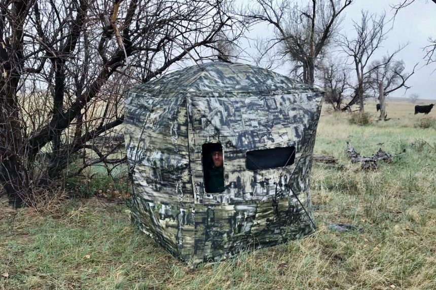 Camouflaged hunting blind.