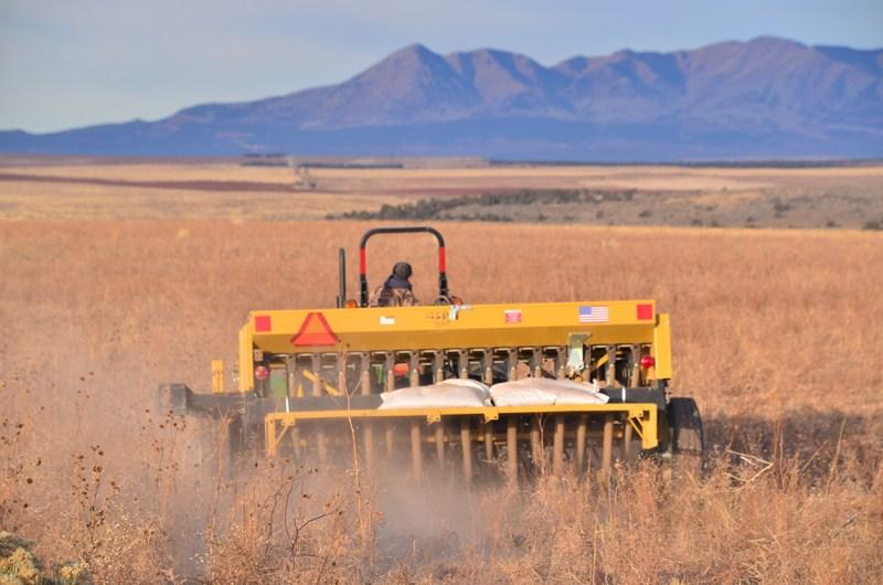 sowing seeds in western Colorado