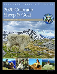 2020 Colorado Sheep & Goat Brochure