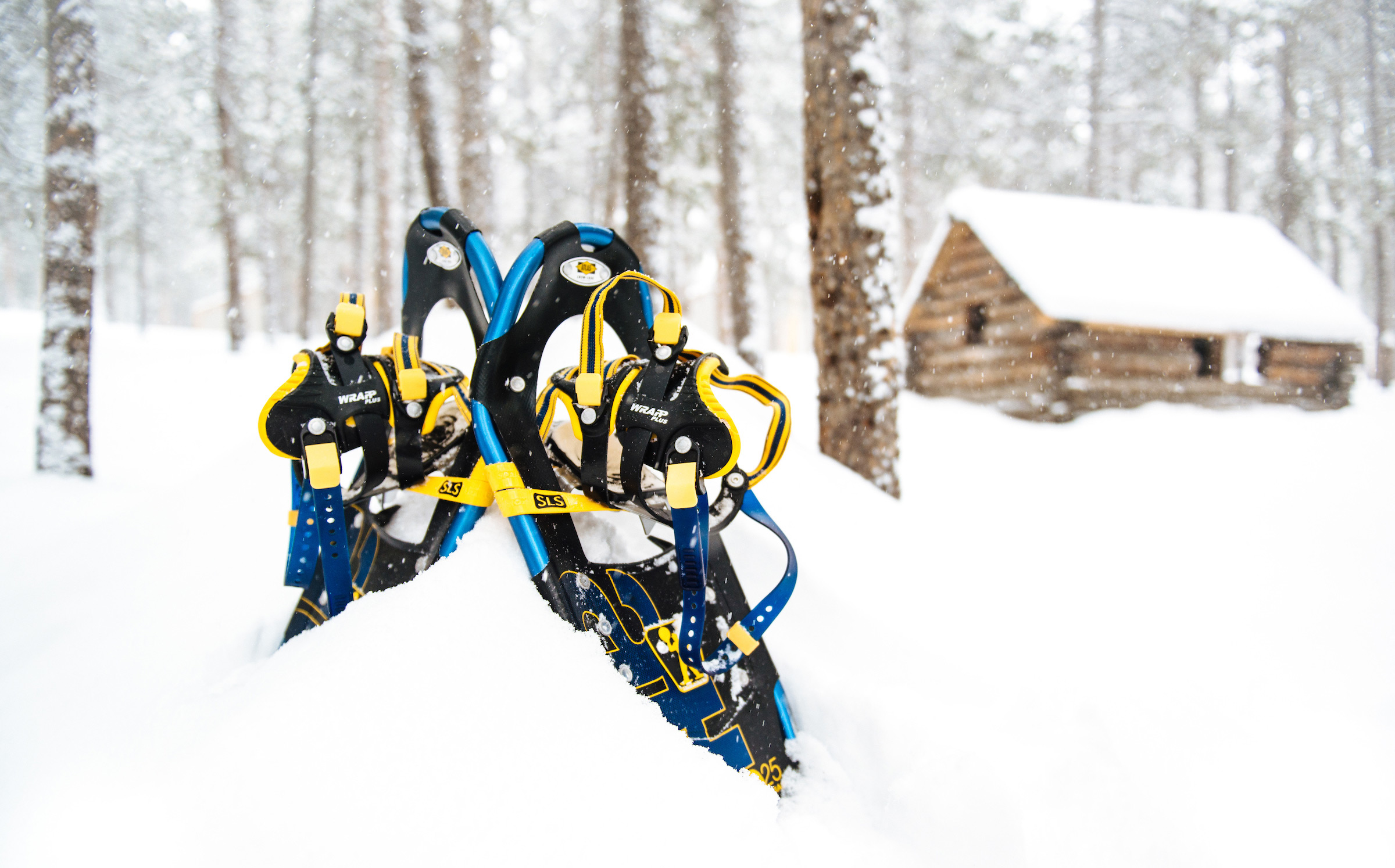 snowshoes and cabin