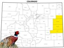 East Central Colorado