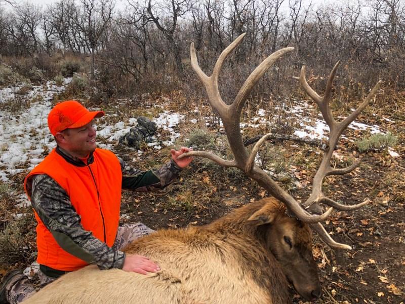 hunter with bull elk