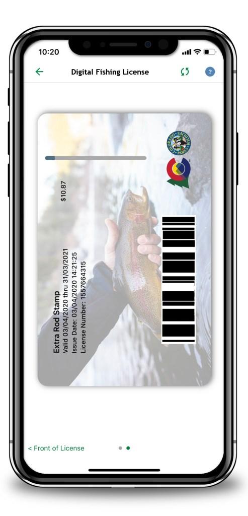 Back of License