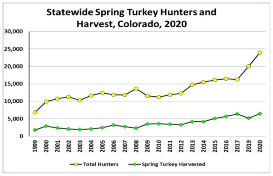 Statewide Spring Turkey Hunters and Harvest, Colorado, 2020