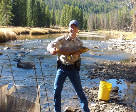 Wildlife officer Scott Murdoch shows one large trout from a fish survey