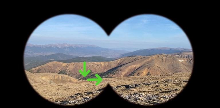 Binocular image