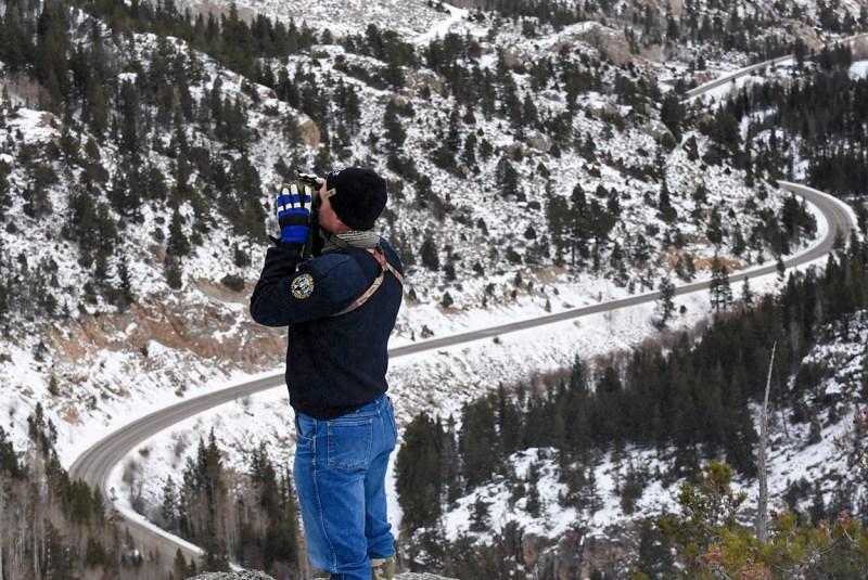 Wildlife biologist surveys Rocky Mountain bighorn sheep.