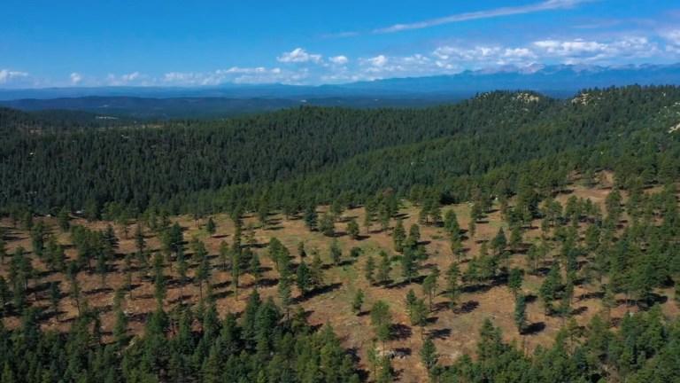 Spanish Peaks State Wildlife Area