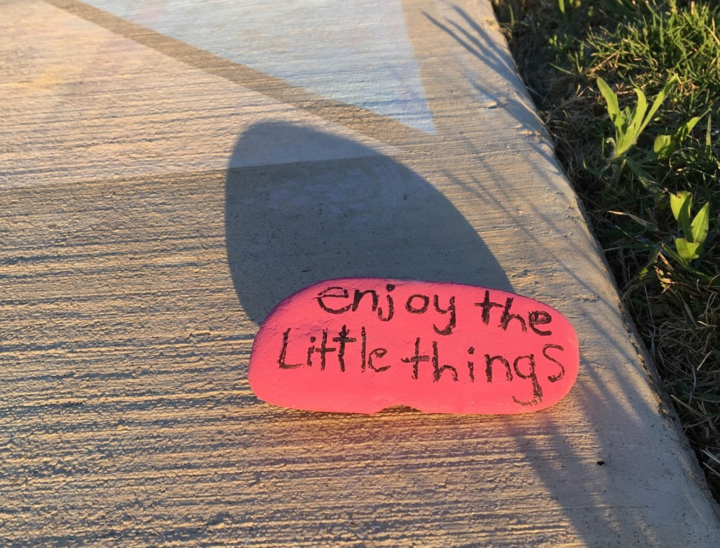 Painted stone with words Enjoy the Little Things