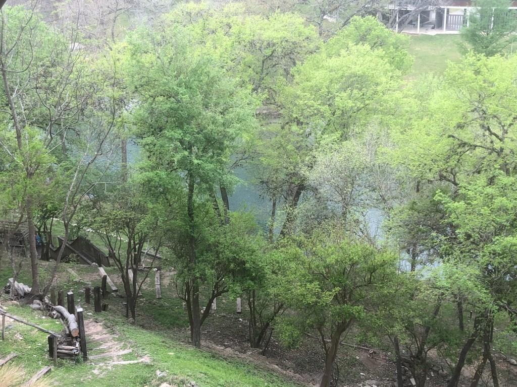 Gruene_2021_River Through the Trees