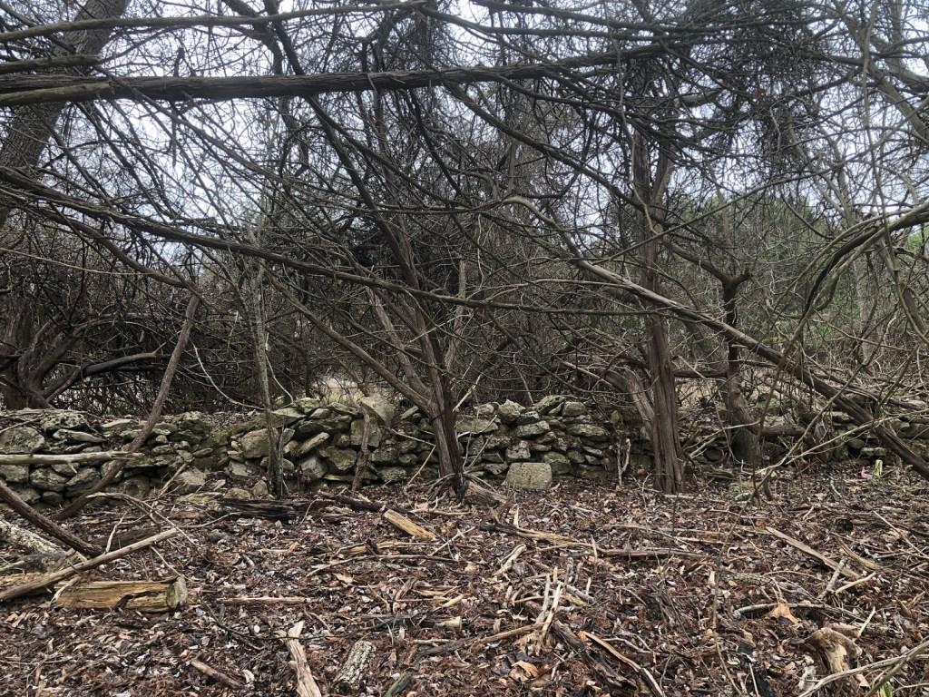 Rock wall in Wimberley