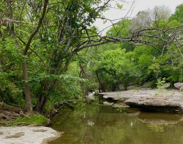 PflugervilleYRE_May2021_Creek