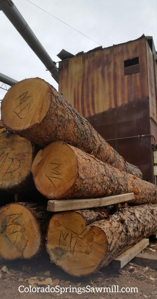 Logs - Colorado Springs Sawmill