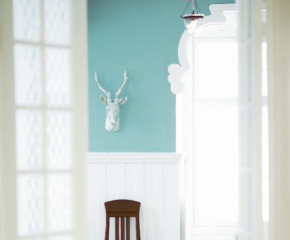 blue wall + antlers