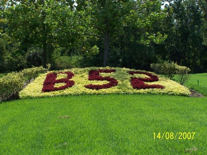 Commercial Flower Bed Design Winter Park Fl Orlando Fl