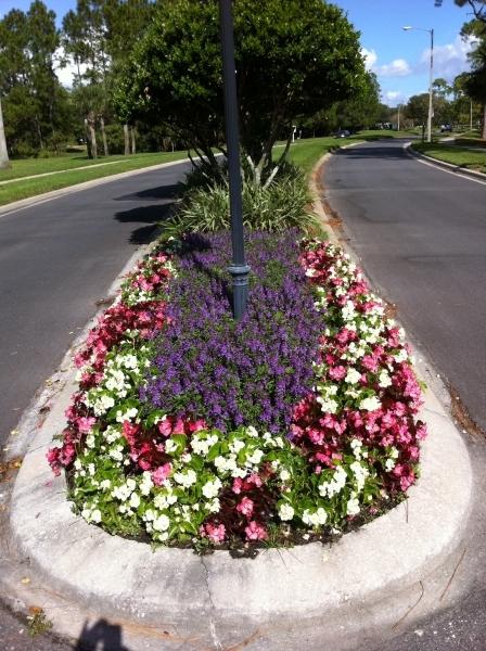 Garden Design Images