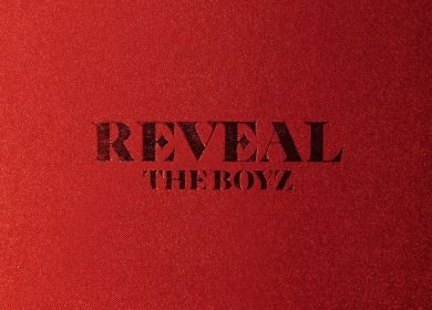 THE BOYZ – Shake You Down
