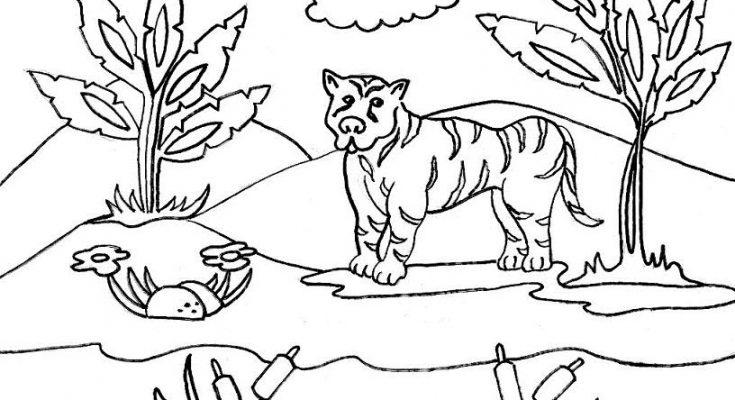 Dibujos De Animales De La Selva Animados Para Colorear On Log Wall