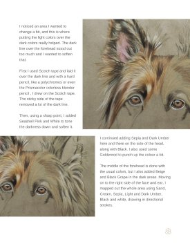 Long Haired German Shepherd Tutorial Page 8