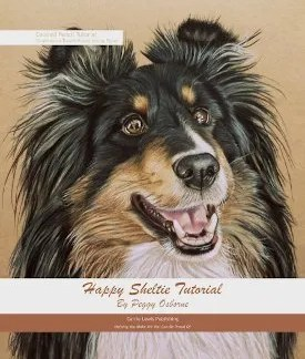 Sheltie Tutorial Cover