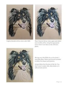 Sheltie Tutorial Page 15