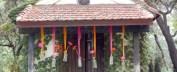 cropped-1-colores_de_boda-ceremonia-civil-fucsia-naranja-botellas-suspendidas-2.jpg
