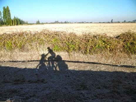 Ein weiterer Morgen auf der Ruta 5