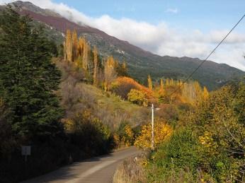 Herbstlicher Weg nach Coyhaique