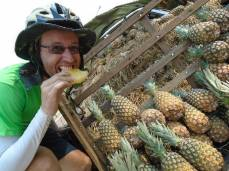 Ananas-Stopp.