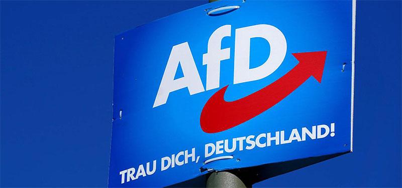 Braun, Brauner, AfD-Kandidat in Brandenburg