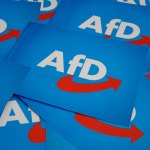 AfD: Und was ist am Ende?