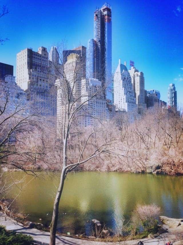 Das Ziel des New York City Marathons liegt im Central Park