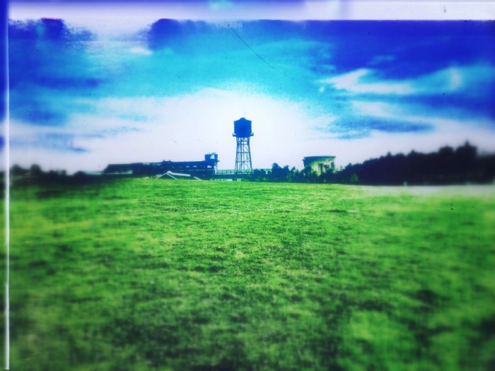 Wiesen mit Turm der Jahrhunderthalle im Hintergrund