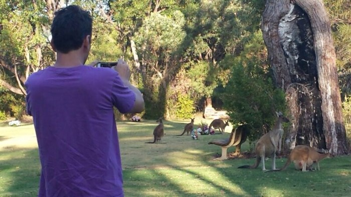 Colorfulcities-Gründer Michael Westerhoff auf Fototour auf dem Pinnaroo Valley Memorial Park