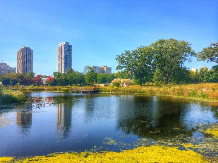 Der renaturierte Lincoln Park
