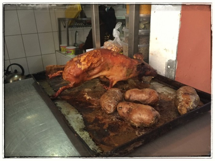 Meerschweinchen mit Kartoffeln
