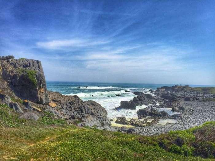 Die wilde Westküste